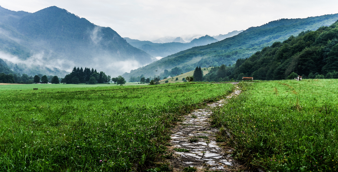 TFP: The paths less travelled with EBRD's Makhmudova